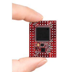 EM2000 Programmable IoT Module